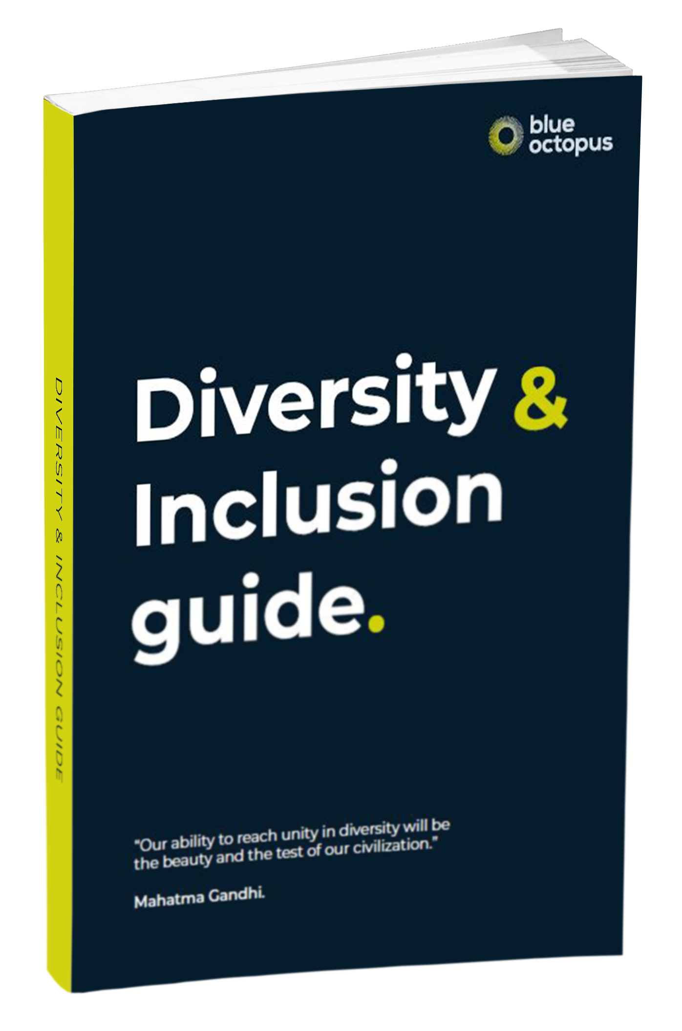 diversity-and-inclusion-guide mock up